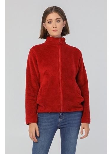 Modaset Fermuarlı Peluş Sweatshirt Bordo Bordo